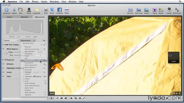 Fixing a chromatic aberration: Aperture 3 Essential Training (2012)