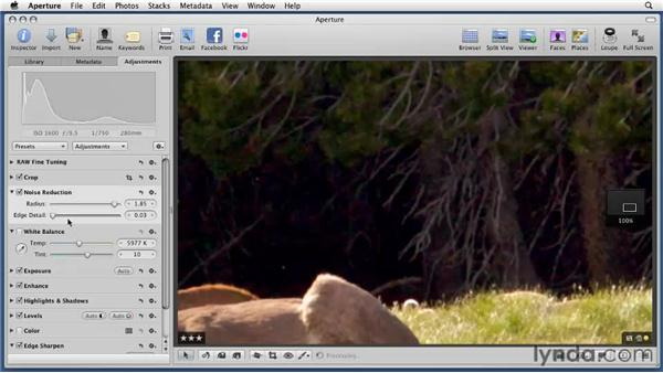 Reducing visual noise: Aperture 3 Essential Training (2012)
