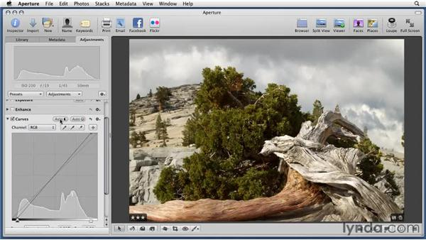 Making adjustments with the Curves tool: Aperture 3 Essential Training (2012)