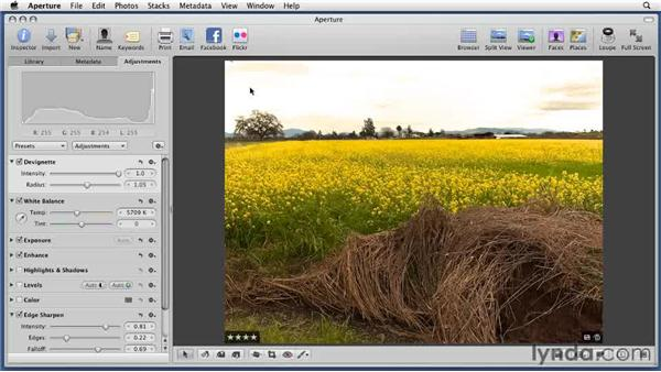 Removing the Vignette effect: Aperture 3 Essential Training (2012)