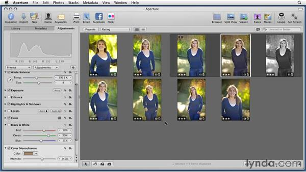 Using the Color Monochrome and Sepia tools: Aperture 3 Essential Training (2012)