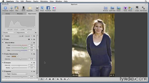 Considering the Sharpen tool: Aperture 3 Essential Training (2012)