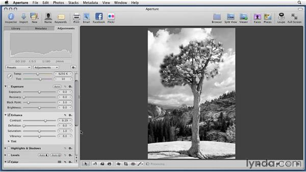 Applying presets: Aperture 3 Essential Training (2012)
