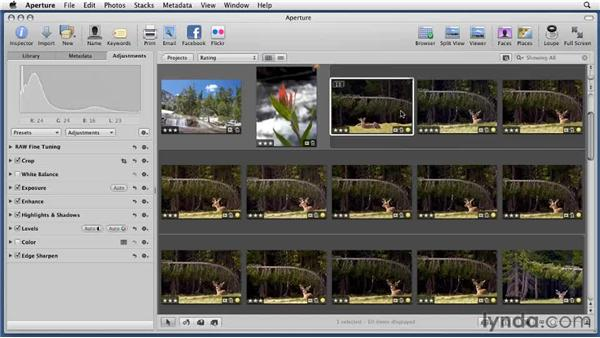 Using the edit plug-ins: Aperture 3 Essential Training (2012)