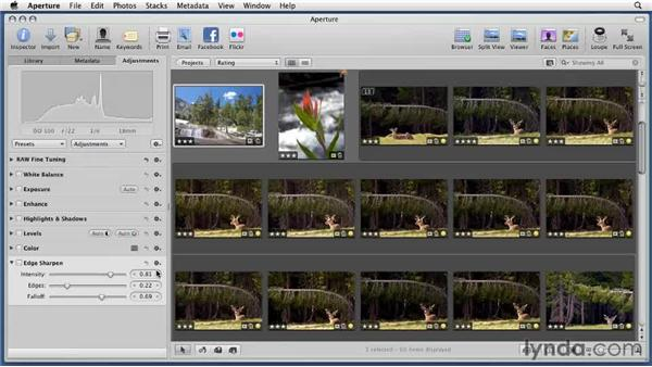 Customizing the Adjustments pane: Aperture 3 Essential Training (2012)