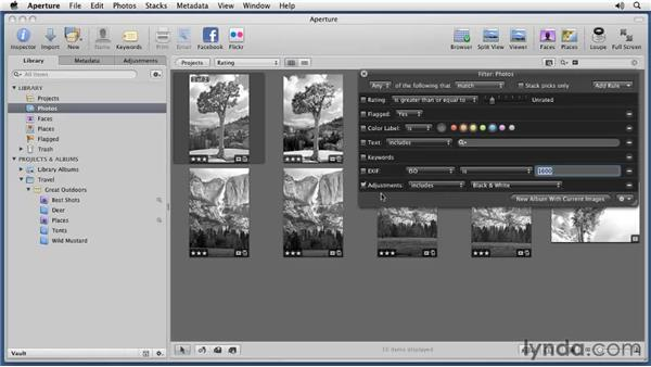 Using the Search box: Aperture 3 Essential Training (2012)