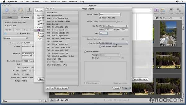Exporting masters and versions: Aperture 3 Essential Training (2012)