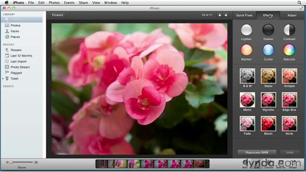 Understanding the unified library for iPhoto and Aperture: Aperture 3 Essential Training (2012)