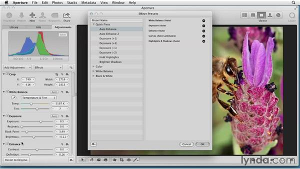 Creating your own Auto Enhance presets: Aperture 3 Essential Training (2012)