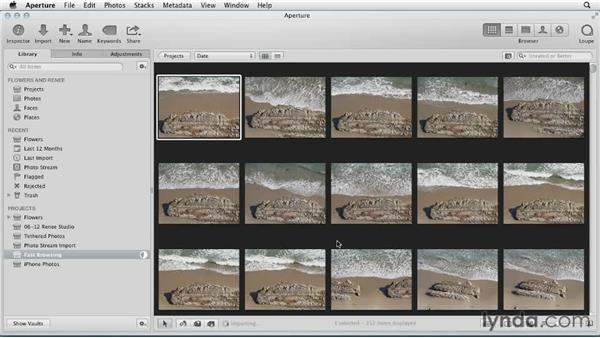 Increasing performance with Fast Browsing combined with Quick Preview: Aperture 3 Essential Training (2012)