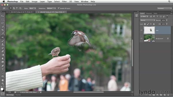 Retouching and removing content: Using Lightroom and Photoshop Together