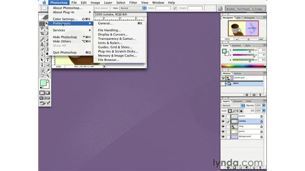 preferences: Learning Photoshop CS for the Web