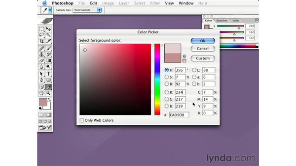 choosing web safe colors: Learning Photoshop CS for the Web