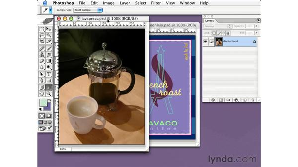 introduction to optimization: Learning Photoshop CS for the Web