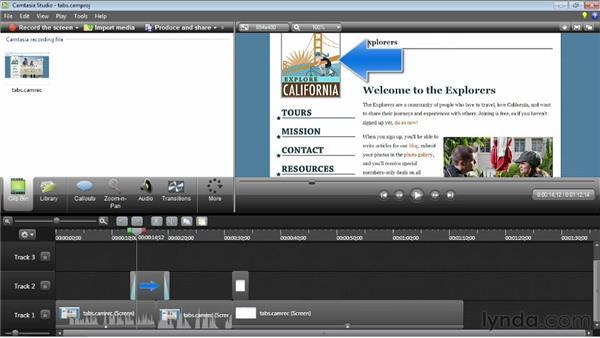 Canvas editing basics: Camtasia Studio 8 Essential Training