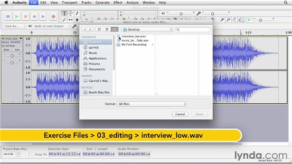 Using common effects: Up and Running with Audacity