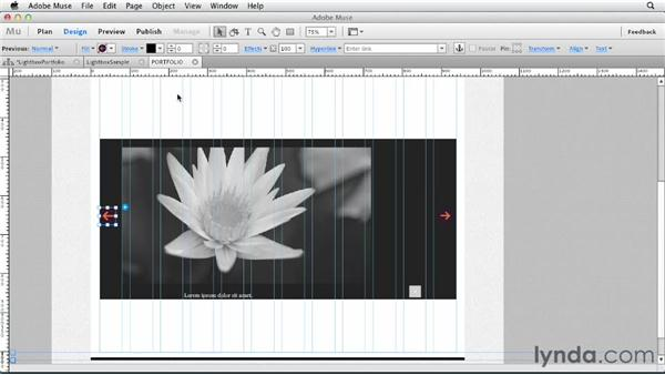 Creating a lightbox photo gallery: Designing a Portfolio Website with Muse