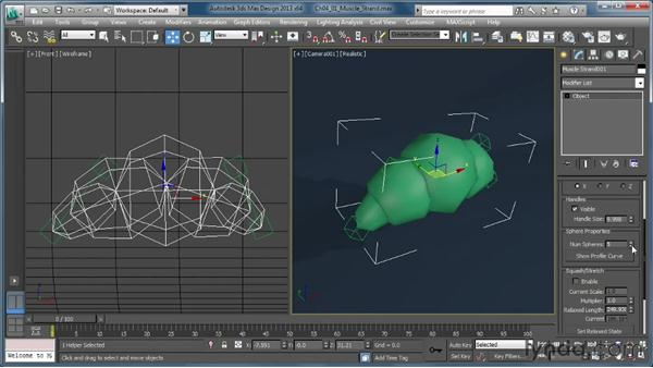 What is a muscle strand?: Getting Started with CAT Rigging Tools in 3ds Max