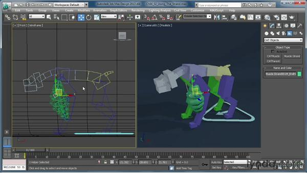 Using a muscle strand on a rig: Getting Started with CAT Rigging Tools in 3ds Max