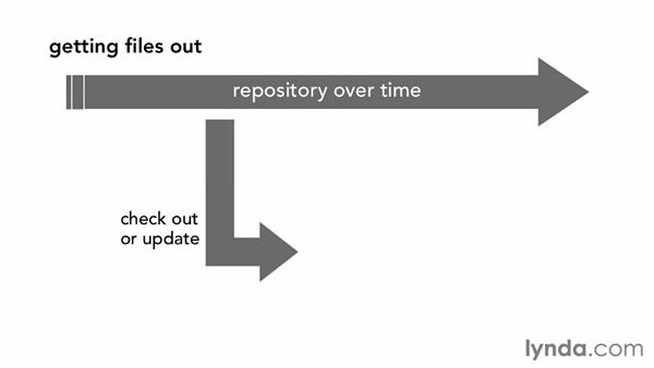 Getting files in and out of a repository: Fundamentals of Software Version Control