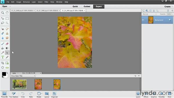 Touring the interface: Photoshop Elements 11 Essentials: 02 Editing and Retouching Photos