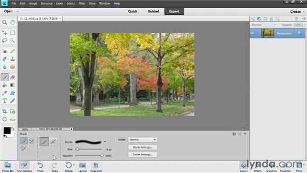 Making the most of the tools in Elements: Photoshop Elements 11 Essentials: 02 Editing and Retouching Photos
