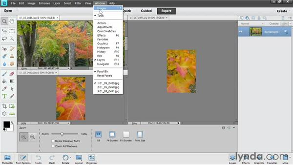 Viewing multiple photos: Photoshop Elements 11 Essentials: 02 Editing and Retouching Photos