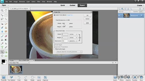 Resizing: Photoshop Elements 11 Essentials: 02 Editing and Retouching Photos