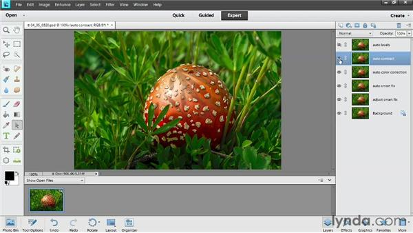 Exploring auto adjustments: Photoshop Elements 11 Essentials: 02 Editing and Retouching Photos