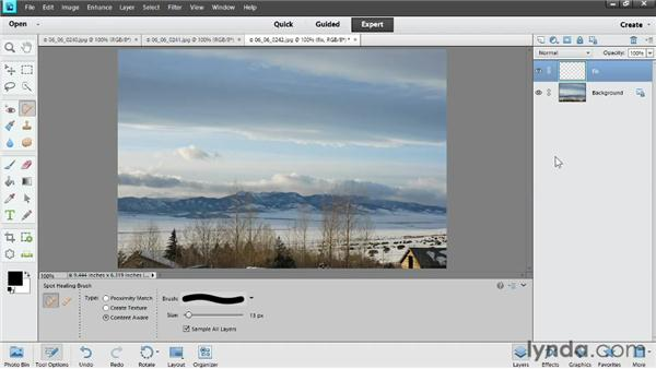 Removing dust spots: Photoshop Elements 11 Essentials: 02 Editing and Retouching Photos
