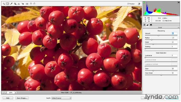 Sharpening: Photoshop Elements 11 Essentials: 02 Editing and Retouching Photos