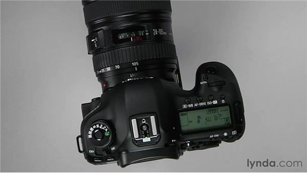 Autofocus basics: Shooting with the Canon 5D Mark III