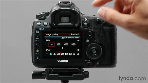 Exploring image format and size: Shooting with the Canon 5D Mark III