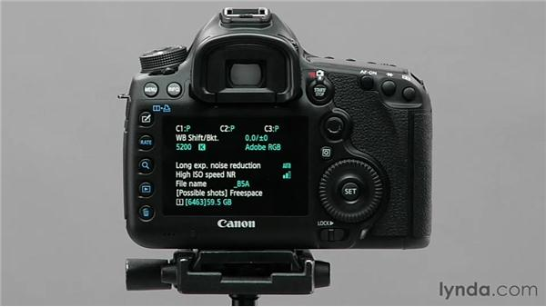 Using the Info button: Shooting with the Canon 5D Mark III