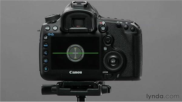 Examining level and grid display: Shooting with the Canon 5D Mark III