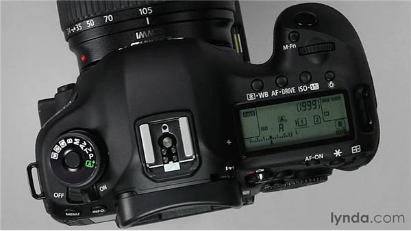 Selecting autofocus areas: Shooting with the Canon 5D Mark III