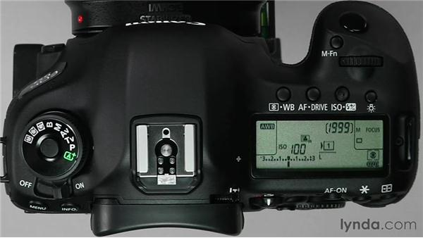 Using auto white balance: Shooting with the Canon 5D Mark III