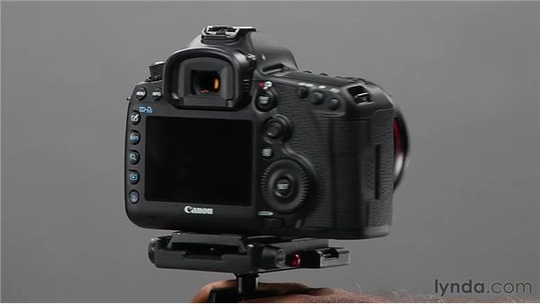 Using the depth of field preview button: Shooting with the Canon 5D Mark III