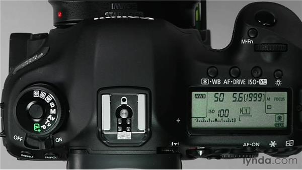 Using Manual mode: Shooting with the Canon 5D Mark III
