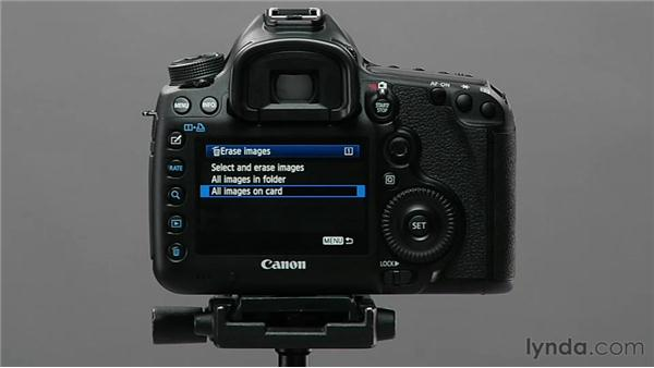 Protecting and deleting images: Shooting with the Canon 5D Mark III