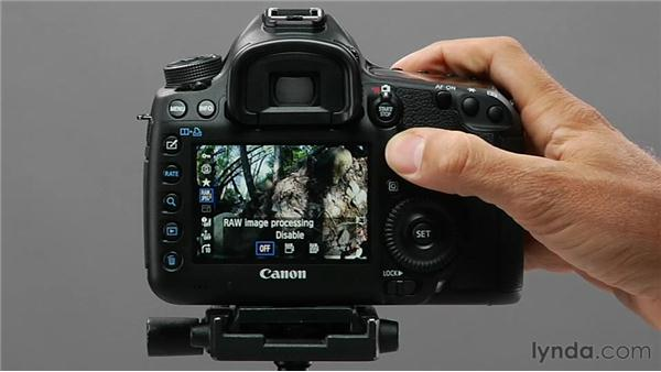 Using Quick Control during playback: Shooting with the Canon 5D Mark III