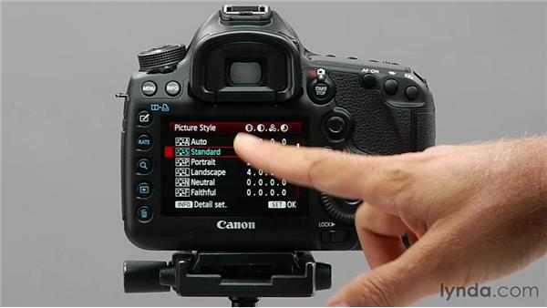 Adjusting predefined picture styles: Shooting with the Canon 5D Mark III