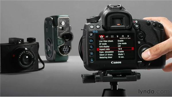 Working with aspect ratio: Shooting with the Canon 5D Mark III