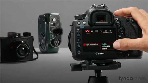 Exploring other Live View options: Shooting with the Canon 5D Mark III