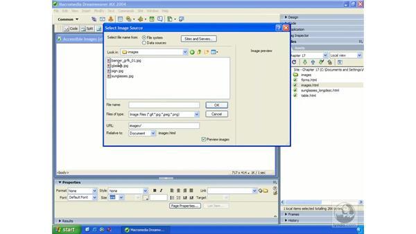 accessibility preferences: Dreamweaver MX 2004 Essential Training