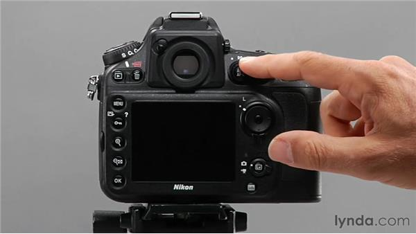 Exploring basic camera anatomy: Shooting with the Nikon D800