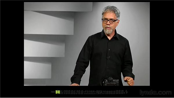 Exploring the viewfinder display: Shooting with the Nikon D800