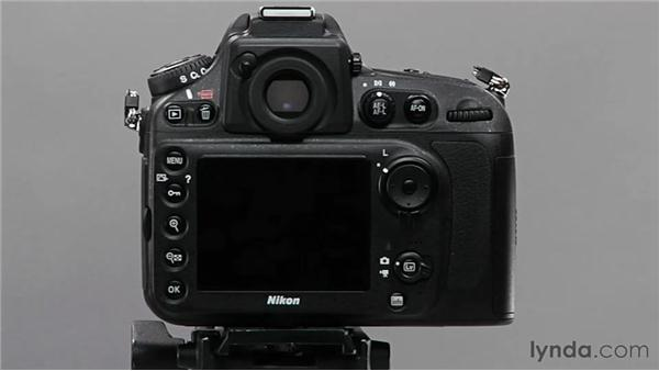 Using the LCD screen protector: Shooting with the Nikon D800