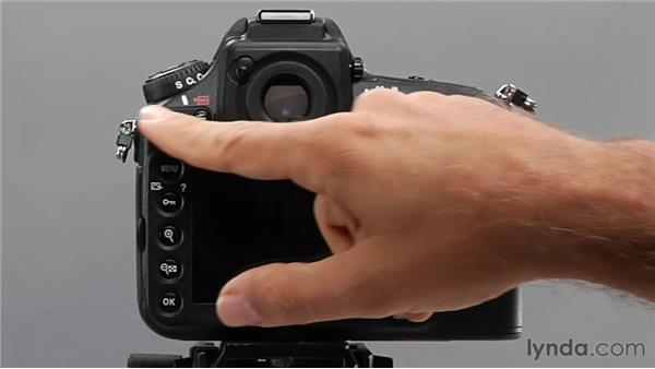 Working with image playback: Shooting with the Nikon D800