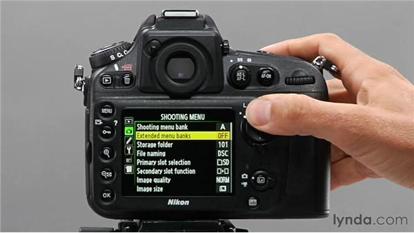 Using screen tips: Shooting with the Nikon D800